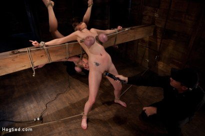 Photo number 7 from 2 girls, massive tits, bound, 1 suspended, 1 neck tied down & arched.<br>Both made to brutally cum! shot for Hogtied on Kink.com. Featuring Katie Kox and Dee Williams in hardcore BDSM & Fetish porn.