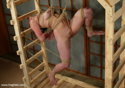 Photo number 8 from Ava shot for Hogtied on Kink.com. Featuring Ava in hardcore BDSM & Fetish porn.