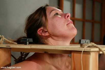 Photo number 12 from Ava shot for Hogtied on Kink.com. Featuring Ava in hardcore BDSM & Fetish porn.