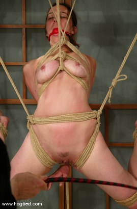 Photo number 2 from Ava shot for Hogtied on Kink.com. Featuring Ava in hardcore BDSM & Fetish porn.