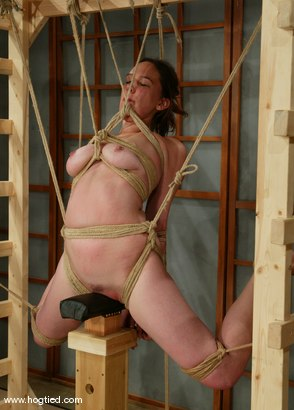 Photo number 3 from Ava shot for Hogtied on Kink.com. Featuring Ava in hardcore BDSM & Fetish porn.
