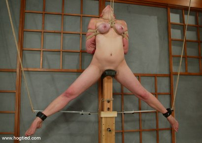 Photo number 5 from Ava shot for Hogtied on Kink.com. Featuring Ava in hardcore BDSM & Fetish porn.