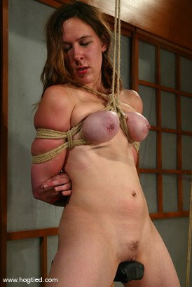 Photo number 6 from Ava shot for Hogtied on Kink.com. Featuring Ava in hardcore BDSM & Fetish porn.