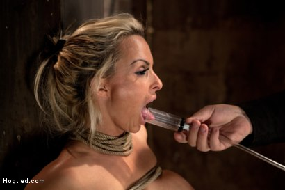 Photo number 3 from Holly Halston all American MILF<br>Her massive breasts oiled watered & bound, she can't stop cumming shot for Hogtied on Kink.com. Featuring Holly Halston in hardcore BDSM & Fetish porn.