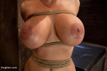 Photo number 1 from Hot MILF, is throat fucked, strap on fucked and made to cum over and over!<br>OH THE HUGE-MAMMARIES! shot for Hogtied on Kink.com. Featuring Holly Halston in hardcore BDSM & Fetish porn.