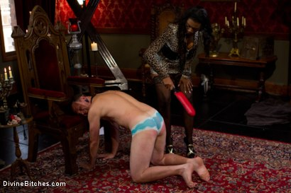 Photo number 3 from The Price Of Being Inadequate: Episode 1 shot for Divine Bitches on Kink.com. Featuring Skyeboy and Nyomi Banxxx in hardcore BDSM & Fetish porn.