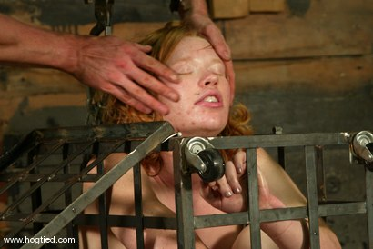 Photo number 11 from Madison Young shot for Hogtied on Kink.com. Featuring Madison Young in hardcore BDSM & Fetish porn.