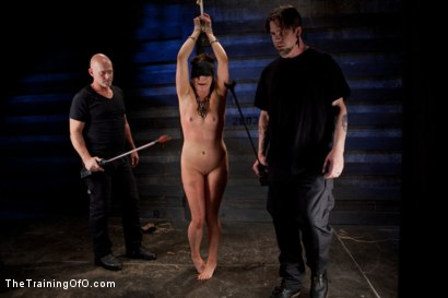 Photo number 1 from Sophie Monroe Live Shoot  Brutal Ass Fucking and Total Pain Overload shot for The Training Of O on Kink.com. Featuring Sophie Monroe and Mark Davis in hardcore BDSM & Fetish porn.