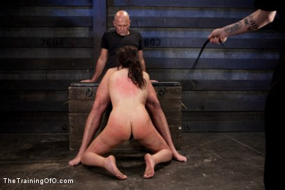 Photo number 6 from Sophie Monroe Live Shoot  Brutal Ass Fucking and Total Pain Overload shot for The Training Of O on Kink.com. Featuring Sophie Monroe and Mark Davis in hardcore BDSM & Fetish porn.
