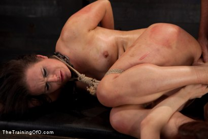 Photo number 14 from Sophie Monroe Live Shoot<br>Brutal Ass Fucking and Total Pain Overload shot for The Training Of O on Kink.com. Featuring Sophie Monroe and Mark Davis in hardcore BDSM & Fetish porn.