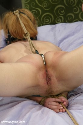 Photo number 11 from Star shot for Hogtied on Kink.com. Featuring Star in hardcore BDSM & Fetish porn.