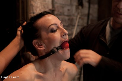 "Photo number 5 from Elise is bound in the ""Flying Rubens"" a brutal Category 5 suspension<br> Caned & made to cum, hard! shot for Hogtied on Kink.com. Featuring Isis Love and Elise Graves in hardcore BDSM & Fetish porn."