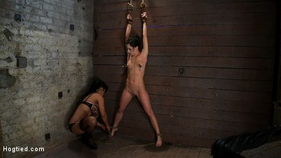 Photo number 1 from Brutalize her with a massive dose of tickling. Boy does she hate every second!<br> C5 suspension  shot for Hogtied on Kink.com. Featuring Isis Love and Elise Graves in hardcore BDSM & Fetish porn.