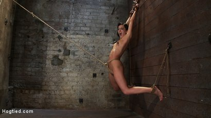 Photo number 12 from Brutalize her with a massive dose of tickling. Boy does she hate every second!<br> C5 suspension  shot for Hogtied on Kink.com. Featuring Isis Love and Elise Graves in hardcore BDSM & Fetish porn.