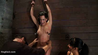 Photo number 5 from Brutalize her with a massive dose of tickling. Boy does she hate every second!<br> C5 suspension  shot for Hogtied on Kink.com. Featuring Isis Love and Elise Graves in hardcore BDSM & Fetish porn.