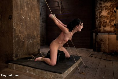 Photo number 11 from Elise is held down by her own HUGE nipples, held down on a Sybian!<br>Any movement is nipple PAIN! shot for Hogtied on Kink.com. Featuring Isis Love and Elise Graves in hardcore BDSM & Fetish porn.
