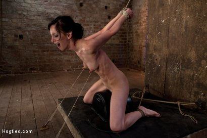 Photo number 5 from Elise is held down by her own HUGE nipples, held down on a Sybian!<br>Any movement is nipple PAIN! shot for Hogtied on Kink.com. Featuring Isis Love and Elise Graves in hardcore BDSM & Fetish porn.