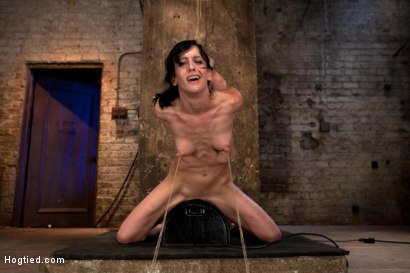 Photo number 9 from Elise is held down by her own HUGE nipples, held down on a Sybian!<br>Any movement is nipple PAIN! shot for Hogtied on Kink.com. Featuring Isis Love and Elise Graves in hardcore BDSM & Fetish porn.
