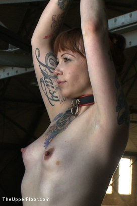 Photo number 18 from Service Day: Sin's Birthday shot for The Upper Floor on Kink.com. Featuring Iona Grace and Sparky Sin Claire in hardcore BDSM & Fetish porn.