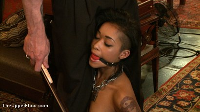 Photo number 12 from Service Day: Flesh shot for The Upper Floor on Kink.com. Featuring Nerine Mechanique, Lilla Katt and Skin Diamond in hardcore BDSM & Fetish porn.