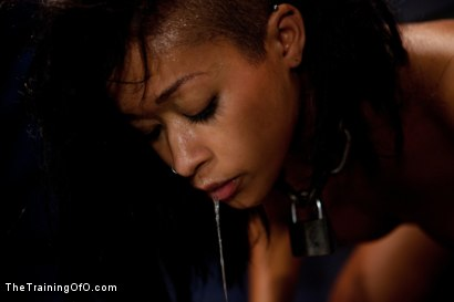 "Photo number 11 from Skin Diamond Day Three<br>""Slave Ransom"" Sexual Training shot for The Training Of O on Kink.com. Featuring Skin Diamond and Maestro in hardcore BDSM & Fetish porn."