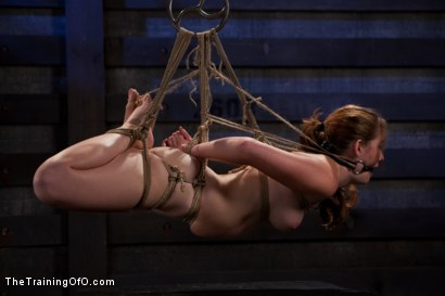Photo number 13 from Sophia Lauryn-Tested<br>First Timer Experiences Real Bondage and Intense Orgasms! shot for The Training Of O on Kink.com. Featuring Sofia Lauryn in hardcore BDSM & Fetish porn.