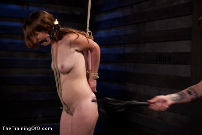 Photo number 15 from Sophia Lauryn-Tested<br>First Timer Experiences Real Bondage and Intense Orgasms! shot for The Training Of O on Kink.com. Featuring Sofia Lauryn in hardcore BDSM & Fetish porn.