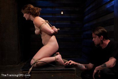 Photo number 7 from Sophia Lauryn-Tested<br>First Timer Experiences Real Bondage and Intense Orgasms! shot for The Training Of O on Kink.com. Featuring Sofia Lauryn in hardcore BDSM & Fetish porn.