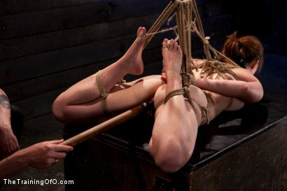 Photo number 14 from Sophia Lauryn-Tested<br>First Timer Experiences Real Bondage and Intense Orgasms! shot for The Training Of O on Kink.com. Featuring Sofia Lauryn in hardcore BDSM & Fetish porn.