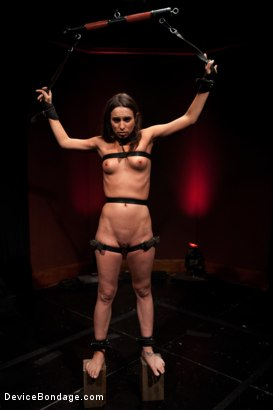 Photo number 13 from Amber Rayne, Helpless and Chained shot for Device Bondage on Kink.com. Featuring Amber Rayne in hardcore BDSM & Fetish porn.