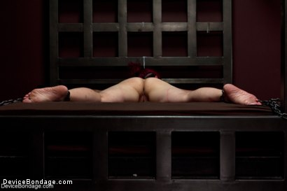 Photo number 13 from Sexy Bad Girl Tamed By Chain shot for Device Bondage on Kink.com. Featuring Rozen Debowe in hardcore BDSM & Fetish porn.