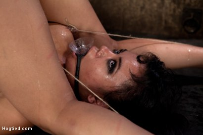 Photo number 11 from Nipples tied to toes, funnel gag directly below her pussy.<br>Made to squirt like a fountain! shot for Hogtied on Kink.com. Featuring Annie Cruz in hardcore BDSM & Fetish porn.