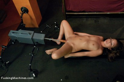 Photo number 9 from 18 years old, 3 months in the biz, hot and unknowing. shot for Fucking Machines on Kink.com. Featuring Sasha Hall in hardcore BDSM & Fetish porn.