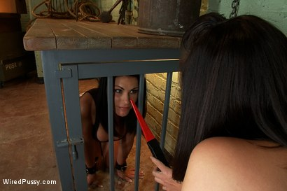 Photo number 3 from Busty Brunette in for a Sure Shock Fuck shot for Wired Pussy on Kink.com. Featuring Bobbi Starr and Ashli Ames in hardcore BDSM & Fetish porn.