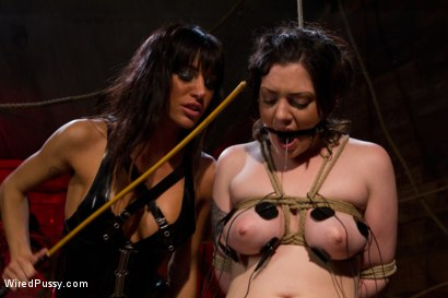 Photo number 7 from Creamy lustful lesbian suffers for the attention shot for Wired Pussy on Kink.com. Featuring Gia DiMarco and Melina Mason in hardcore BDSM & Fetish porn.