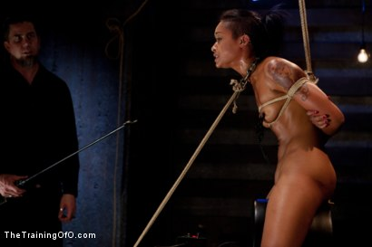 Photo number 11 from Skin Diamond-Day 4<br>Intense Predicament Bondage & Non-Stop Orgasms Pushes ash Over the Edge shot for The Training Of O on Kink.com. Featuring Skin Diamond in hardcore BDSM & Fetish porn.