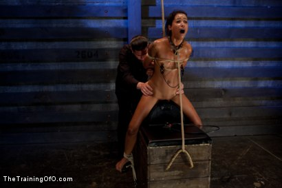 Photo number 12 from Skin Diamond-Day 4<br>Intense Predicament Bondage & Non-Stop Orgasms Pushes ash Over the Edge shot for The Training Of O on Kink.com. Featuring Skin Diamond in hardcore BDSM & Fetish porn.