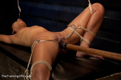 Photo number 7 from Skin Diamond-Day 4<br>Intense Predicament Bondage & Non-Stop Orgasms Pushes ash Over the Edge shot for The Training Of O on Kink.com. Featuring Skin Diamond in hardcore BDSM & Fetish porn.