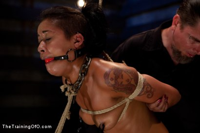 Photo number 8 from Skin Diamond-Day 4<br>Intense Predicament Bondage & Non-Stop Orgasms Pushes ash Over the Edge shot for The Training Of O on Kink.com. Featuring Skin Diamond in hardcore BDSM & Fetish porn.