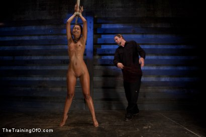 Photo number 1 from Skin Diamond-Day 4<br>Intense Predicament Bondage & Non-Stop Orgasms Pushes ash Over the Edge shot for The Training Of O on Kink.com. Featuring Skin Diamond in hardcore BDSM & Fetish porn.