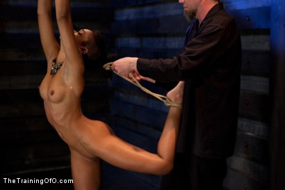Photo number 5 from Skin Diamond-Day 4<br>Intense Predicament Bondage & Non-Stop Orgasms Pushes ash Over the Edge shot for The Training Of O on Kink.com. Featuring Skin Diamond in hardcore BDSM & Fetish porn.