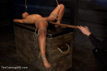 Photo number 9 from Skin Diamond-Day 4<br>Intense Predicament Bondage & Non-Stop Orgasms Pushes ash Over the Edge shot for The Training Of O on Kink.com. Featuring Skin Diamond in hardcore BDSM & Fetish porn.