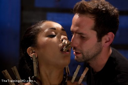 Photo number 5 from Skin Diamond Live Show   The Final Test of Slave Training ash shot for The Training Of O on Kink.com. Featuring Skin Diamond, Maestro and Asphyxia Noir in hardcore BDSM & Fetish porn.