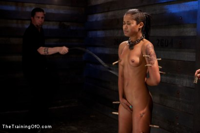 Photo number 9 from Skin Diamond Live Show   The Final Test of Slave Training ash shot for The Training Of O on Kink.com. Featuring Skin Diamond, Maestro and Asphyxia Noir in hardcore BDSM & Fetish porn.