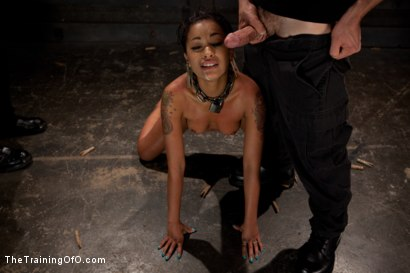 Photo number 11 from Skin Diamond Live Show<br>The Final Test of Slave Training ash shot for The Training Of O on Kink.com. Featuring Skin Diamond, Maestro and Asphyxia Noir in hardcore BDSM & Fetish porn.