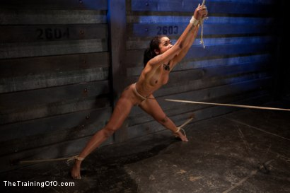 Photo number 12 from Skin Diamond Live Show<br>The Final Test of Slave Training ash shot for The Training Of O on Kink.com. Featuring Skin Diamond, Maestro and Asphyxia Noir in hardcore BDSM & Fetish porn.