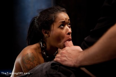Photo number 24 from Skin Diamond Live Show<br>The Final Test of Slave Training ash shot for The Training Of O on Kink.com. Featuring Skin Diamond, Maestro and Asphyxia Noir in hardcore BDSM & Fetish porn.