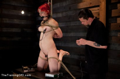 Photo number 6 from Sloane Soleil LIVE Shoot<br>19's Final Test shot for The Training Of O on Kink.com. Featuring Sloane Soleil in hardcore BDSM & Fetish porn.