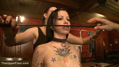 Photo number 3 from Service Day shot for The Upper Floor on Kink.com. Featuring Nerine Mechanique and Krysta Kaos in hardcore BDSM & Fetish porn.