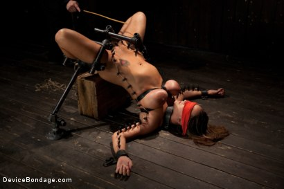 Photo number 2 from Boobs in Bondage - A day with Trina shot for Device Bondage on Kink.com. Featuring Trina Michaels in hardcore BDSM & Fetish porn.